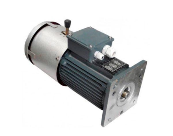 Электрический двигатель редуктора в сборе ZLP 630